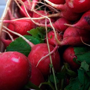 Frutas-Belinda-Frutas-18