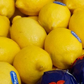 Frutas-Belinda-Frutas-20