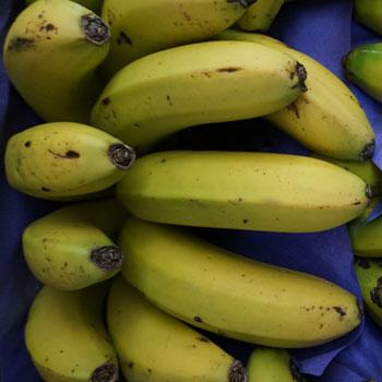 Frutas-Belinda-Frutas-2