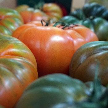 Frutas-Belinda-Frutas-8