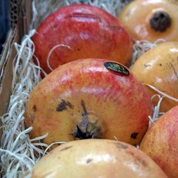 Frutas-Belinda-Frutas-9