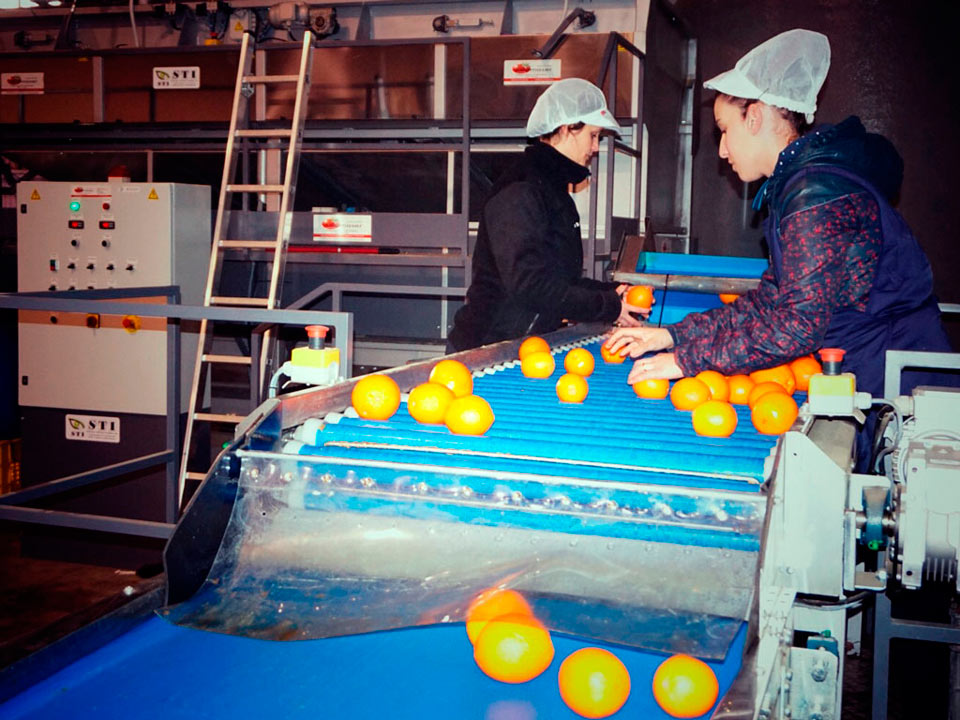 Frutas-Belinda-Instalaciones-Rodillo