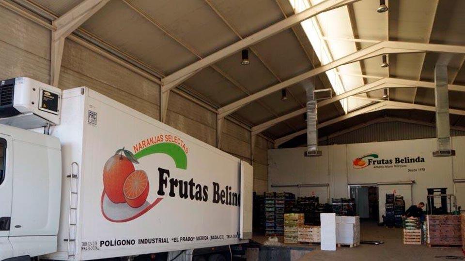 Frutas-Belinda-Furgo-nave
