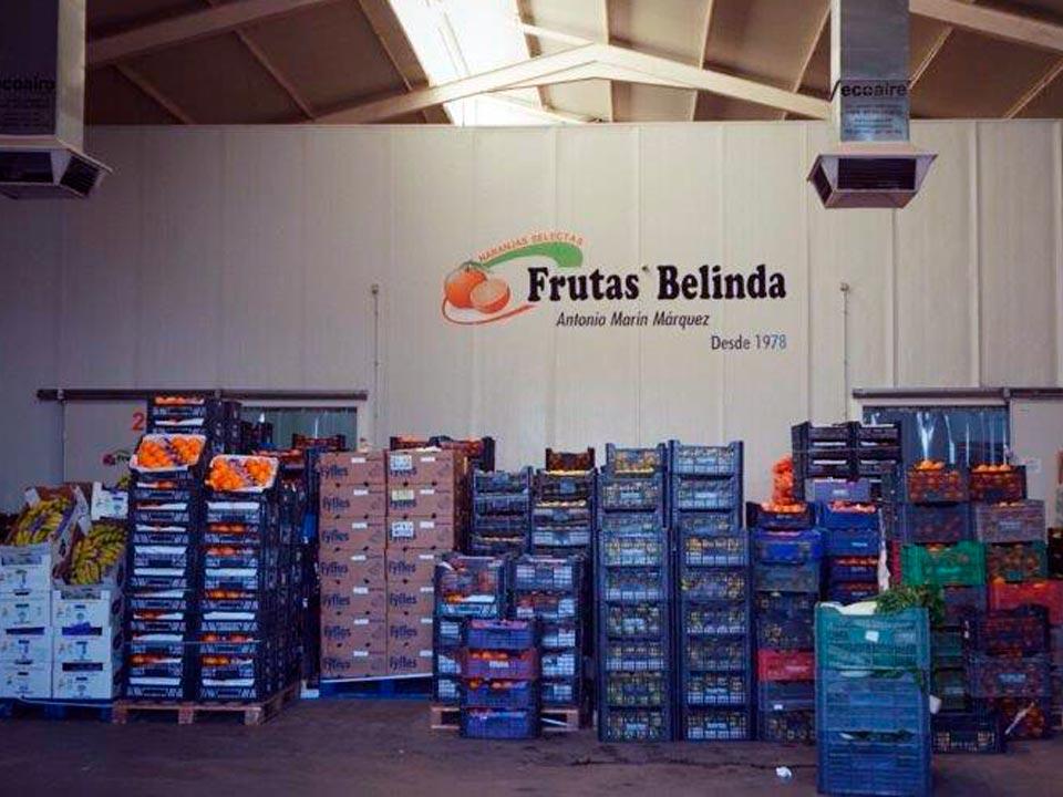 Frutas-Belinda-cajas-fruta-nave
